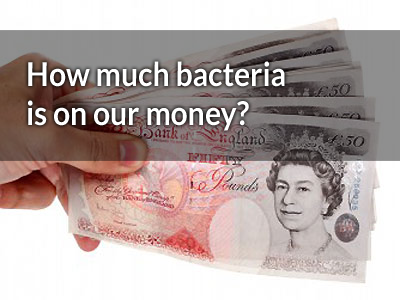 26,000 bacterial colonies and UK notes were among the dirtiest