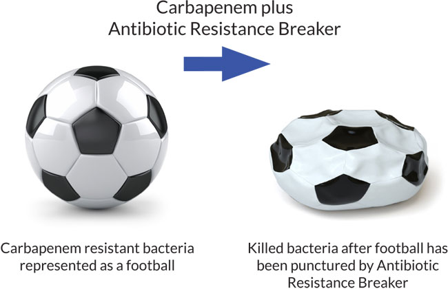A picture showing how antibiotic resistance breakers work
