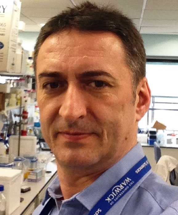Dr. David Roper