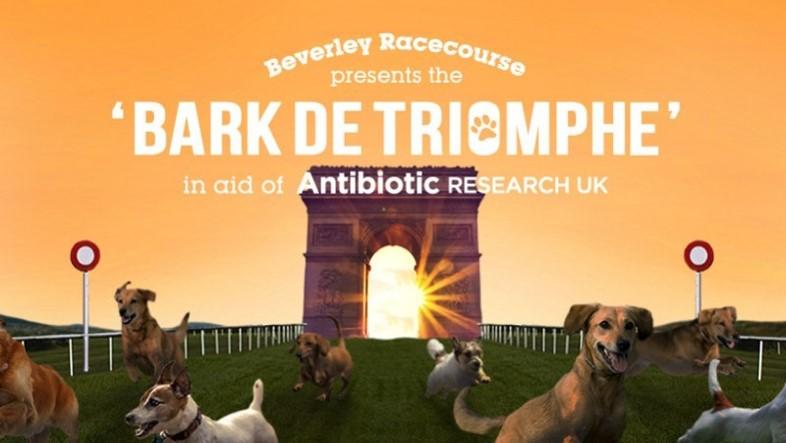 Bark de Triomphe poster Beverley 010817