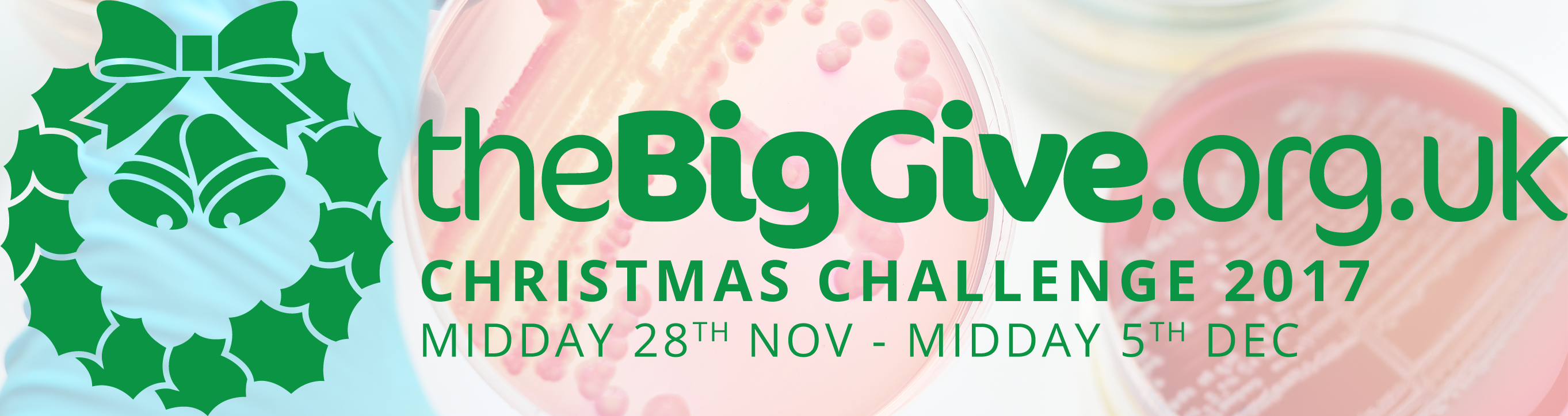 Christmas Challenge.The Big Give Christmas Challenge 2017 Donate To Antibiotic