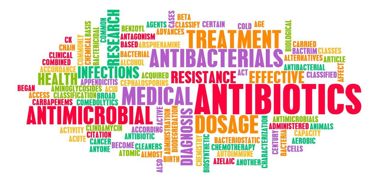 antibiotic research funding word cloud