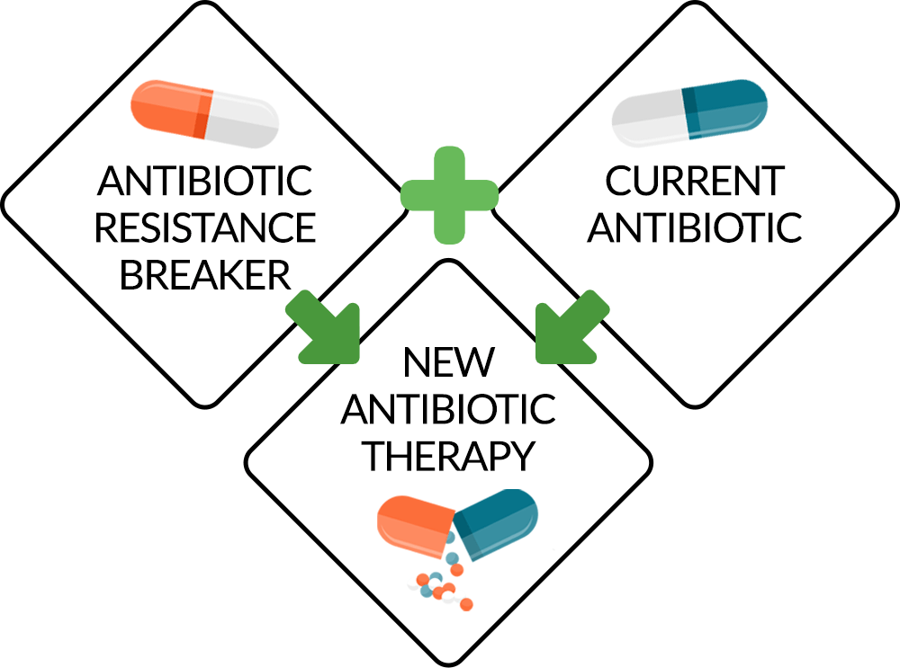 antibiotic resistance breakers infographic