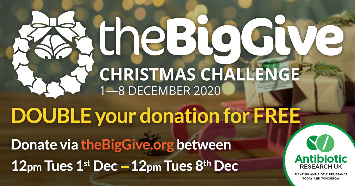 The Big Give Christmas Challenge infographic